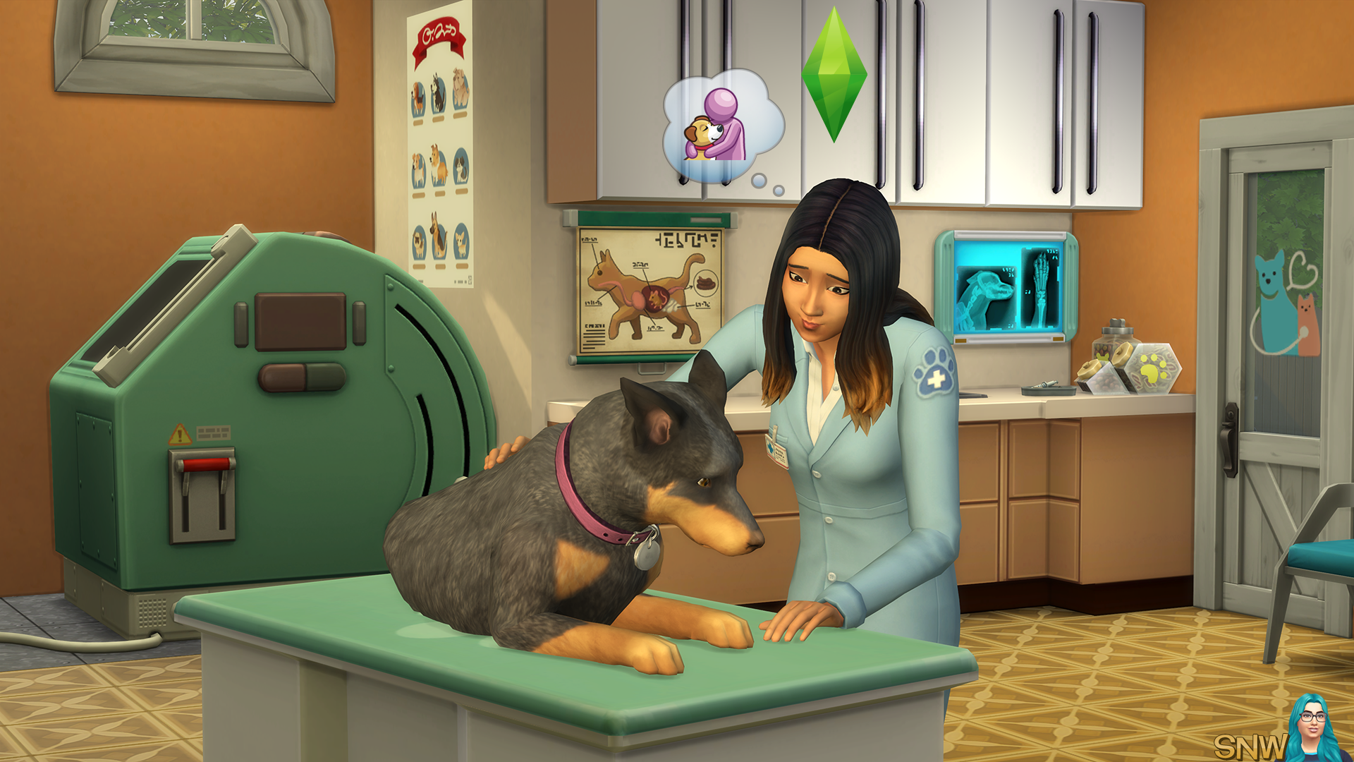 The Sims 4: Cats & Dogs